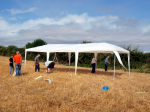A gazebo shelter for the diggers is nearly erected